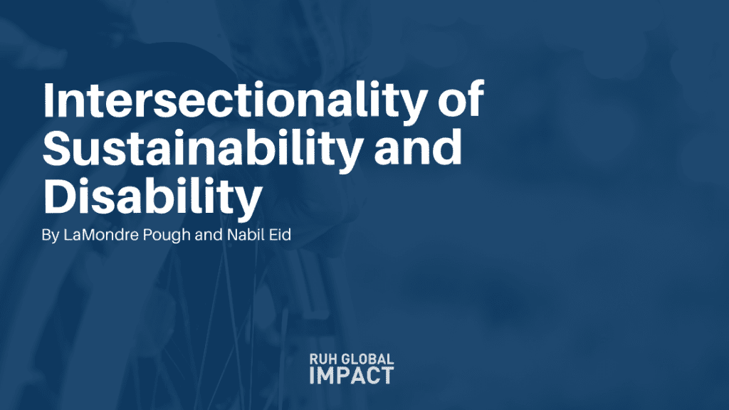 Intersectionality of Sustainability and Disability